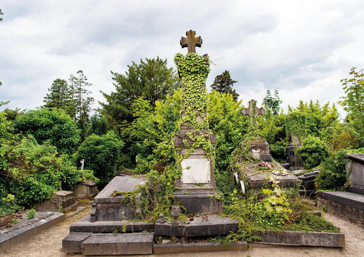 Foto begraafplaats aan de Dieweg