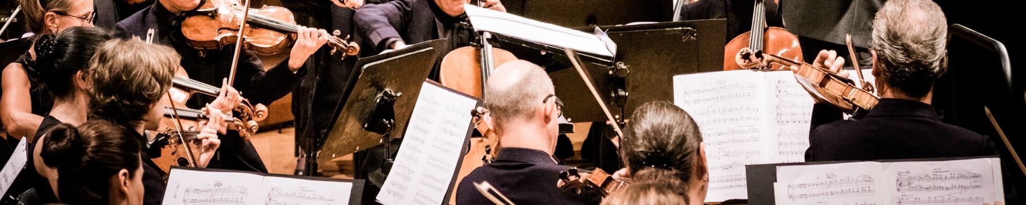 Brussel combi-concert Brussels Philharmonic UiTinBrussel wandeling diner concert inschrijven