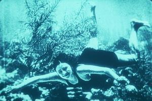 Filmplatform Avila