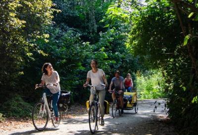 Bike Your Travel