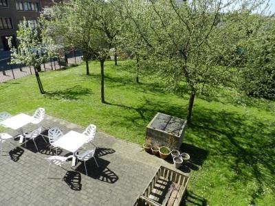 Sint-Agatha-Berchem: Bibliotheektuin met appel-, pruimen- en perenbomen én leesterras