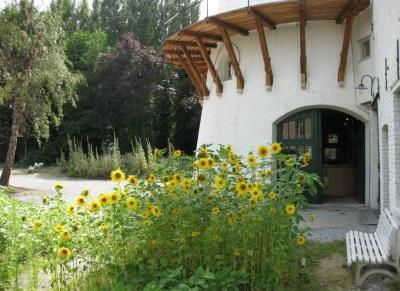 Evere: De tuin van het Museum van de Molen en de Voeding